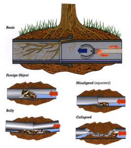 sewer-lines-clogged1